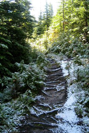 Banff Hiking Trail Photo Print Poster