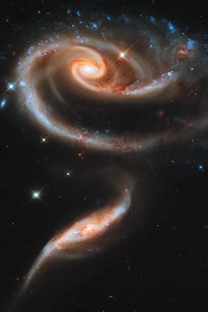 Rose Galaxy Hubble Space Photo