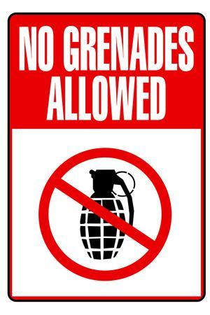 Jersey Shore No Grenades Allowed TV Poster Print