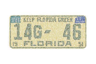 Florida Vintage Auto Plate