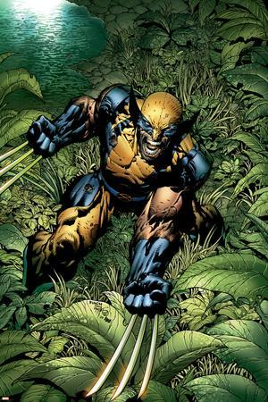 New Avengers No.5 Cover: Wolverine Crouching