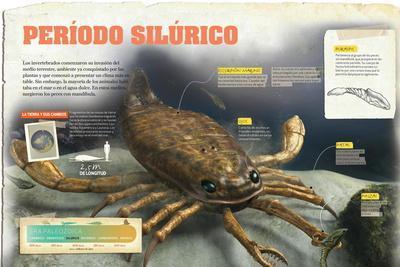 Infografía Sobre El Período Silúrico (Era Paleozoica)