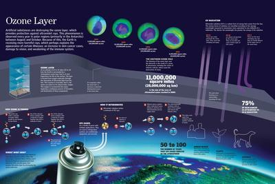 Infographic of the Hole in the Ozone Layer and of the Noxious Effects for All Types of Life
