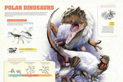 Infographic About the Dinosaurs That Lived in Cold Regions Like the Pole