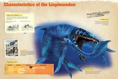 Infographic of the Liopleurodon, a Marine Predator from the Jurassic Period