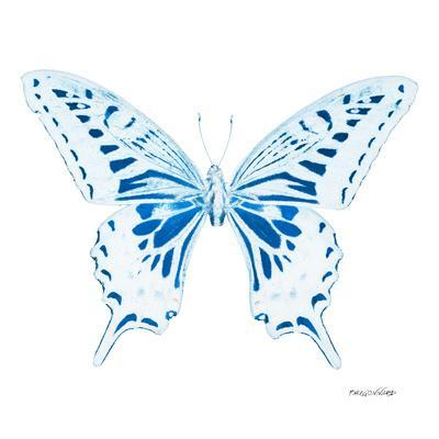 Miss Butterfly Xuthus Sq - X Ray White Edition
