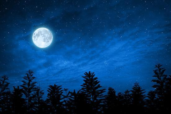 Forest in Silhouette with Starry Night Sky and Full Moon , Elements of this  Image are Furnished by