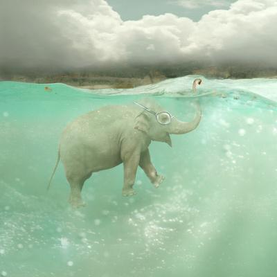 Beautiful Funny Elephant Swimmer Underwater with a Landscape in the Background