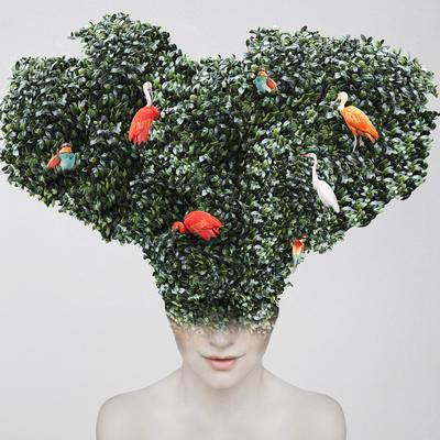 Artistic Surreal Portrait of a Girl with a Huge Headgear of Foliage and Colorful Birds on it Isolat