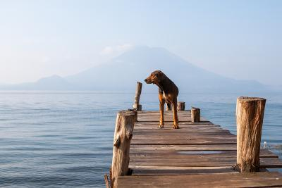 Landscape with a Dog on a Pier by the Lake.