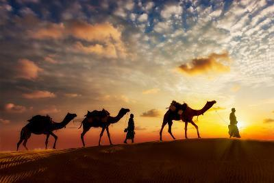 Travel Background - Two Cameleers (Camel Drivers) with Camels Silhouettes in Dunes of Desert on Sun