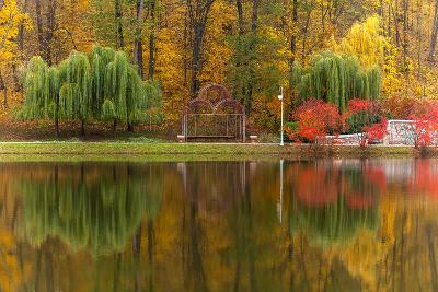 Autumn Tints of Nature,Park in Autumn Tints is Reflected in Silent Pond,Autumn,Autumn Winter,Fall P