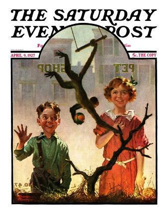 """Pet Shop Monkey,"" Saturday Evening Post Cover, April 9, 1927"