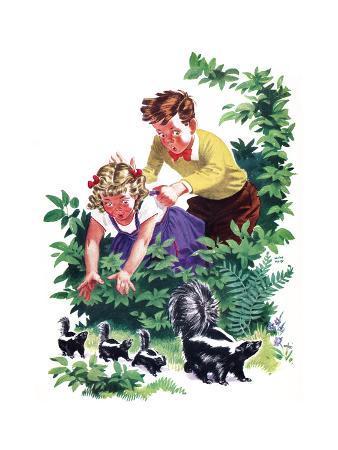 Cuddly Skunk - Child Life