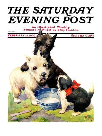"""""""Cat Guards Bowl of Milk,"""" Saturday Evening Post Cover, February 27, 1926"""