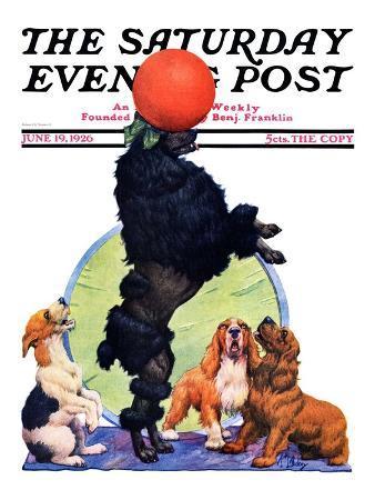 """Poodle Tricks,"" Saturday Evening Post Cover, June 19, 1926"