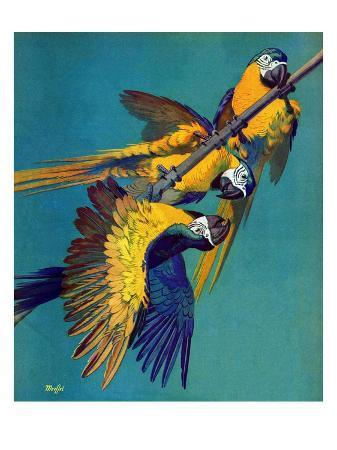 """Three Parrots,""March 11, 1939"