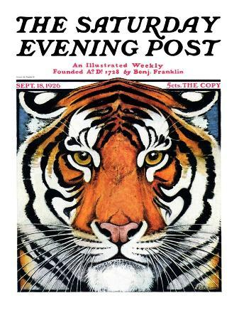 """Tiger Head,"" Saturday Evening Post Cover, September 18, 1926"