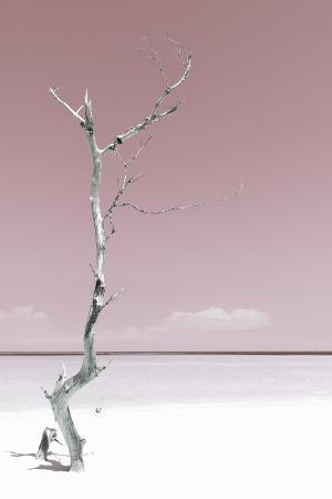 Cuba Fuerte Collection - Solitary Tree - Pastel Red
