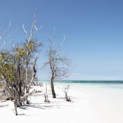 Cuba Fuerte Collection SQ - Sandy Beach Pastel Blue