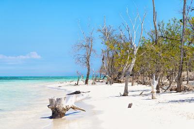 Cuba Fuerte Collection - White Sand Beach