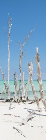 Cuba Fuerte Collection Panoramic - Wild White Sand Beach
