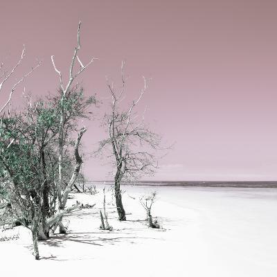 Cuba Fuerte Collection SQ - Sandy Beach Pastel Pale Violet