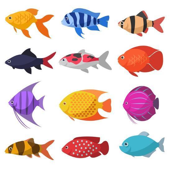 Isolated River Fish Set Of Freshwater Aquarium Cartoon Fishes Varieties Of Ornamental Popular Col