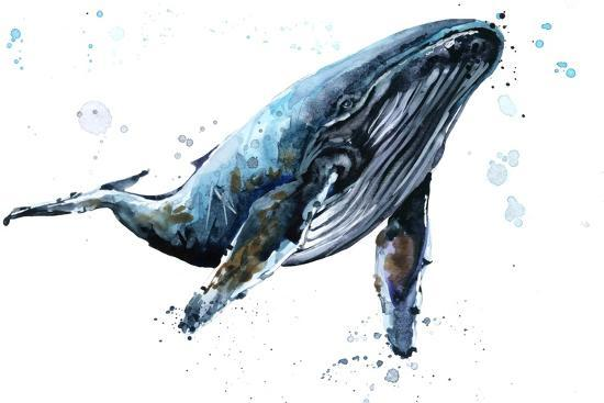 humpback whale watercolor illustration underwater fauna prints by