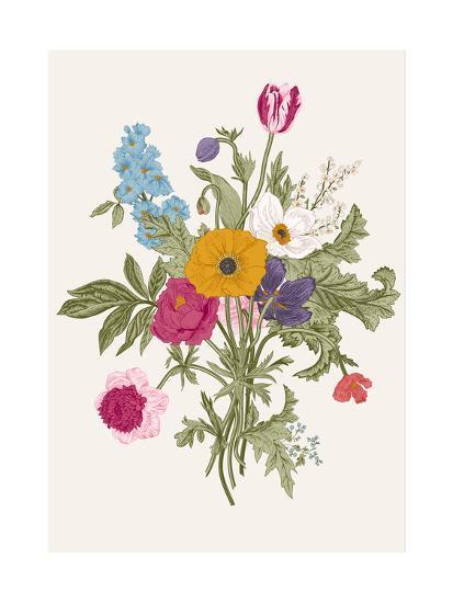 Victorian Bouquet  Spring Flowers  Poppy, Anemones, Tulips, Delphinium   Vintage Botanical Illustrat