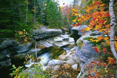 Rocky Creek During Fall White Mountains