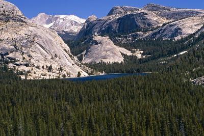 View of the Tenaya Lake Yosemite National Park