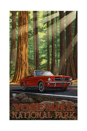 Yosemite National Park MIR Road Trip