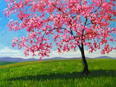 Lone Pink Blossom Tree