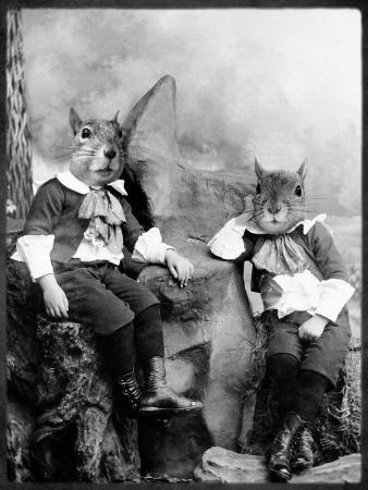 The Squirrelton Twins