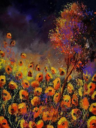 Orange Poppies 454101