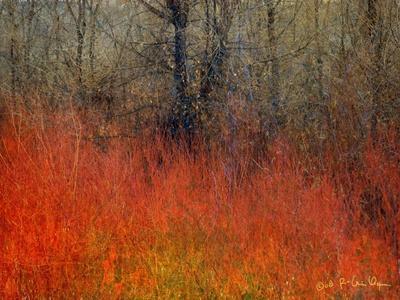 Red Grass II