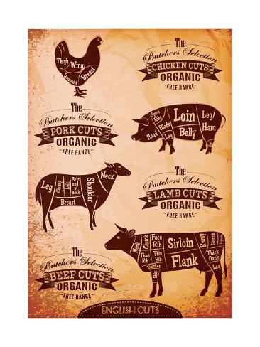 Diagram Of Cut Carcasses Chicken Pig Cow Lamb Posters By
