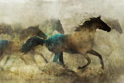 Horses, Wild and Free