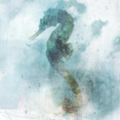 Coastal Mist Seahorse