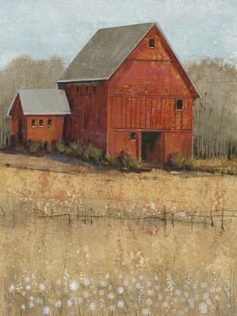 Red Barn View II