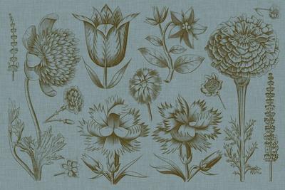 Flower Display II