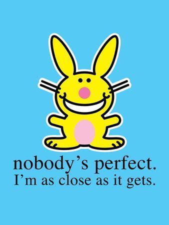 Nobodys Perfec