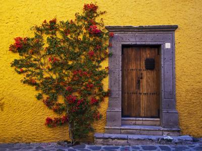 Mexico, San Miguel de Allende, Doorway with Flowering Bush