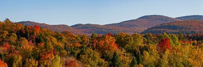 Elevated view of autumn trees on rolling hill, West Bolton, Quebec, Canada