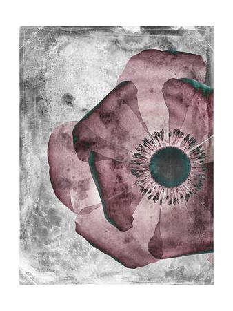 Flower Inversions 1