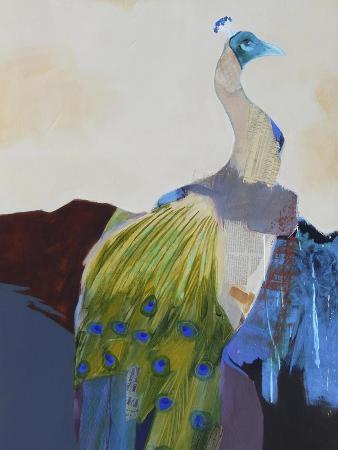 Peacock Transition I