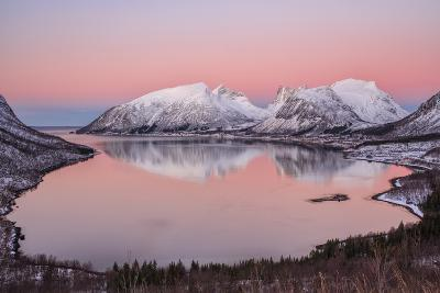 Pink sky at sunrise lights up the snowy peaks reflected in the cold sea, Bergsbotn, Senja, Norway