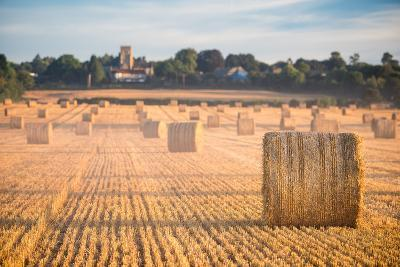 Hay bales in the Cuddesdon countryside, Oxfordshire, England, United Kingdom, Europe