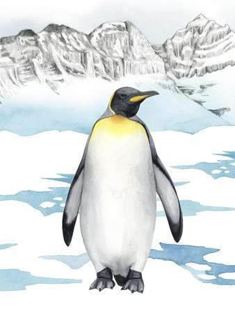 Arctic Animal I